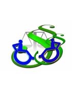 Insercion laboral de personas con discapacidad